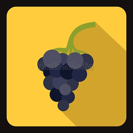 bunch of grapes icon flat style