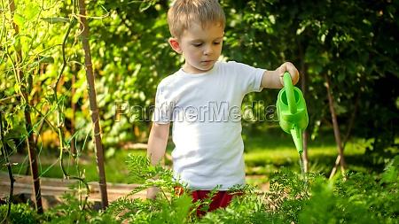 portrait of little toddler boy helping