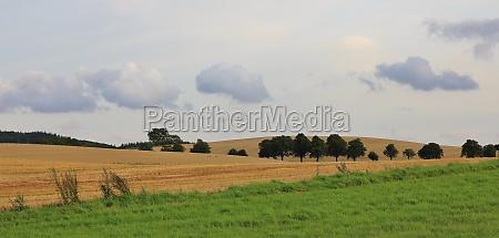 rural landscape in moen denmark