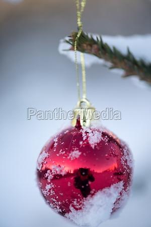 christmas balls on pine tree