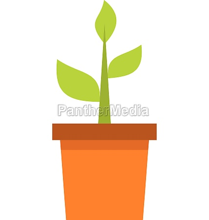 plant in clay pot icon flat