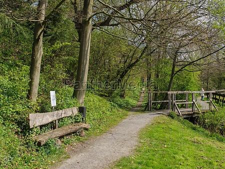 hiking in the german westphalia at