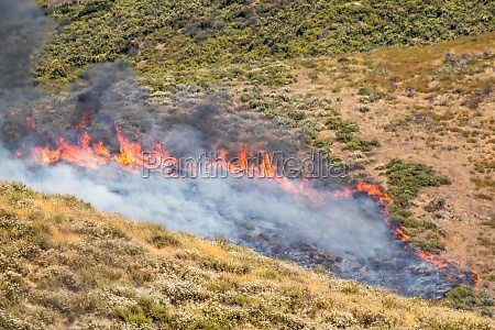 dry brush wild fire spreading quickly