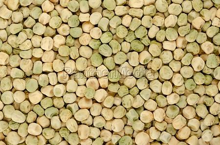 snow pea seeds chinese pea seeds