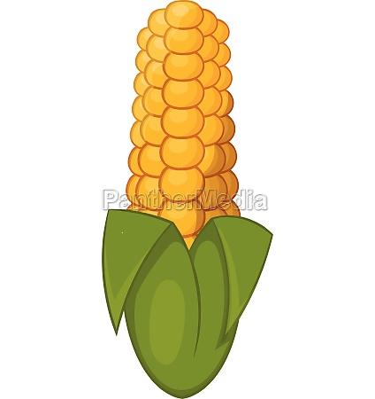 ear of corn icon cartoon style