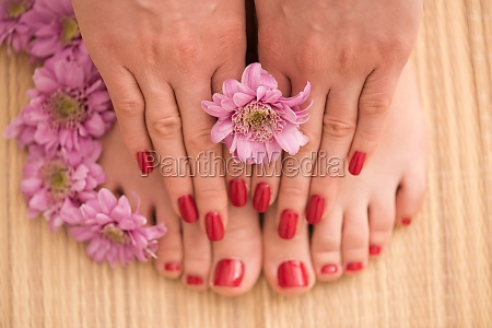 female feet and hands at spa