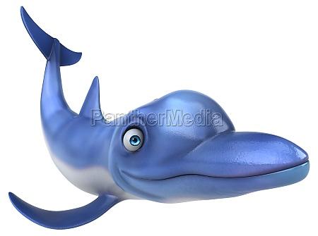 fun dolphin 3d illustration
