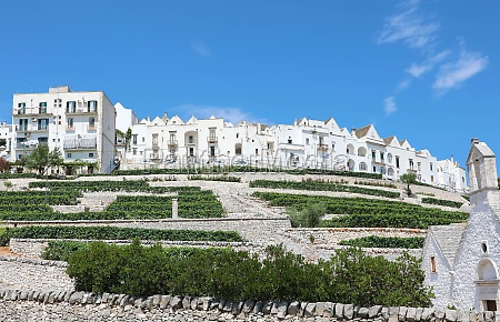beautiful view of locorotondo white historic