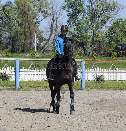 equestrian sports with teenagers horse club