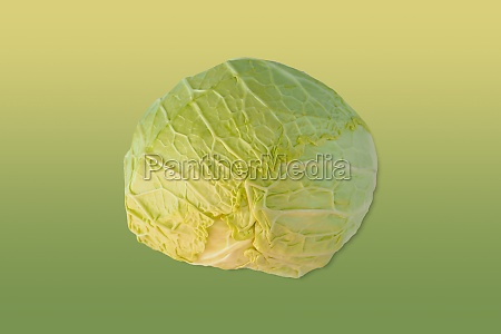 green cabbage over matching colour