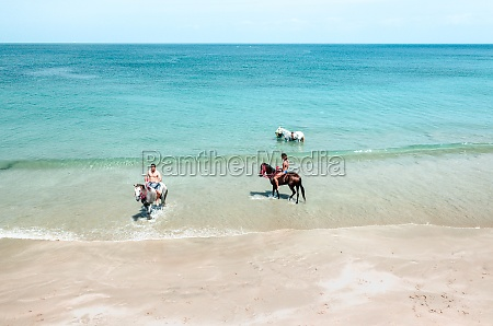 aerial view of people riding horses