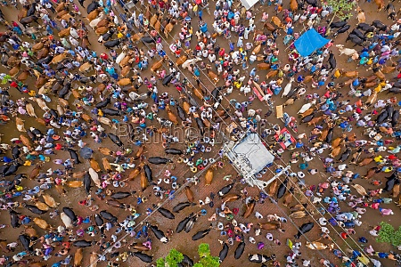 dhunat bangladesh 31 july 2020