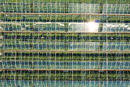 aerial birdseye view above large greenhouses