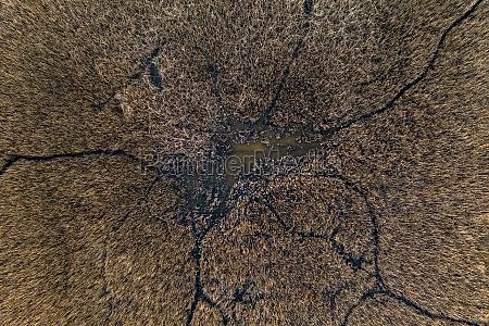 aerial view of marshland ria de