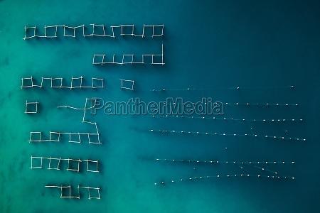 aerial view of oyster farm in
