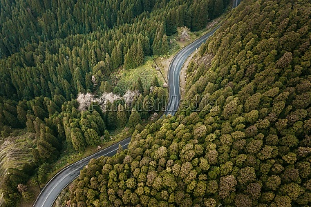 aerial view road winding through the