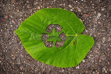 green tree leaf with recycle symbol