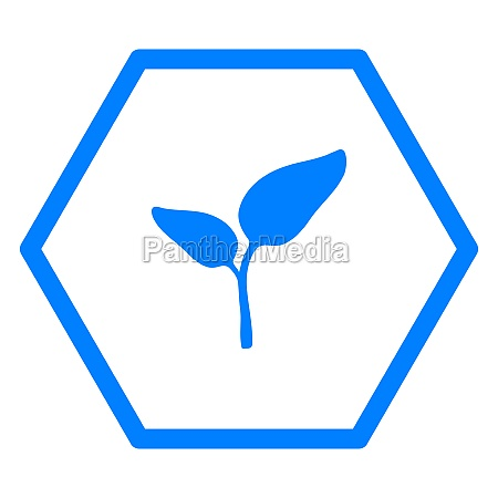 plant and hexagon