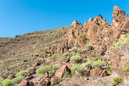 volcanic rock while mountain hiking on