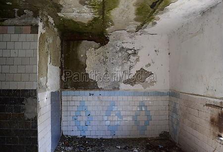 the walls of an old abandoned