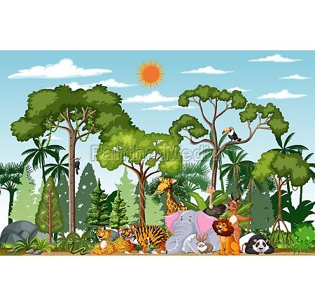 wild animal cartoon character in the