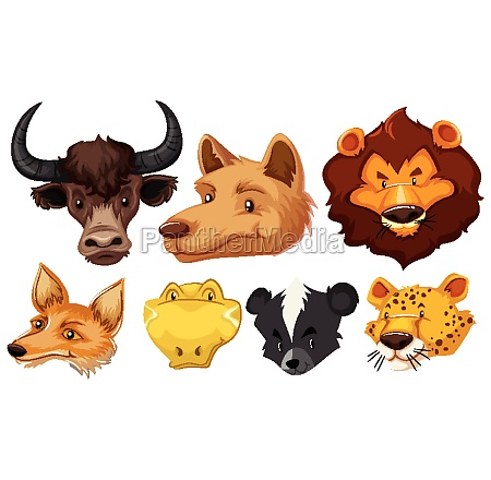 set of various animal head