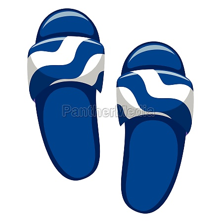 pair of blue sandals