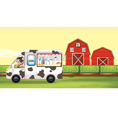 cow driving milk truck on the