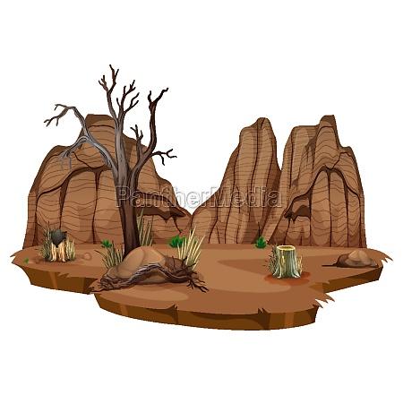 wild desert on white background
