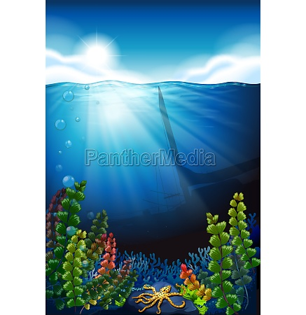 scene with blue sea and underwater