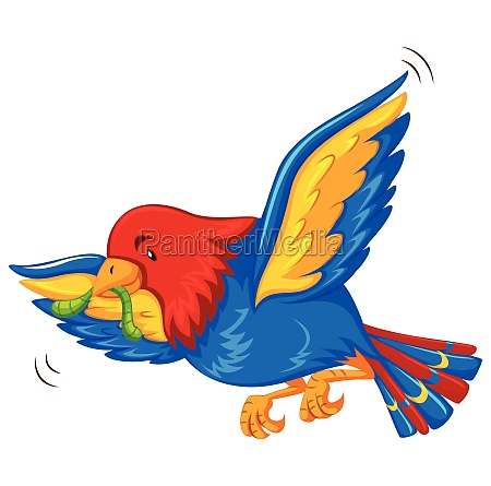 colorful bird flying with worm in