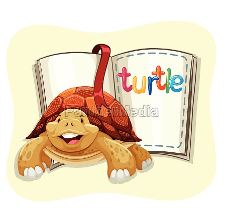 brown turtle and a book
