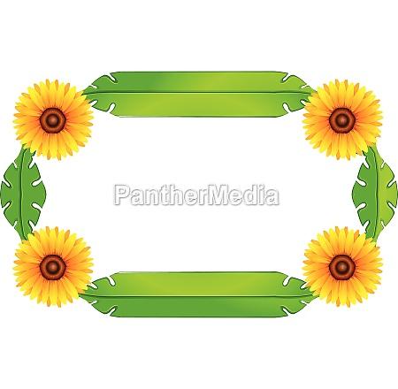 a floral border design