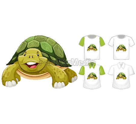 turtle cartoon character with many types