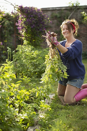 happy woman harvesting fresh potatoes in