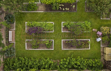 aerial view couple gardening in lush