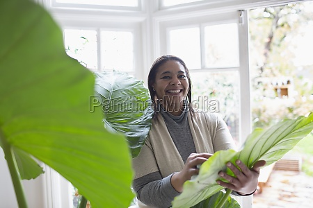 portrait happy woman cleaning plant leaves