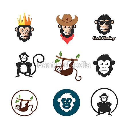 monkey vector icon logo illustration