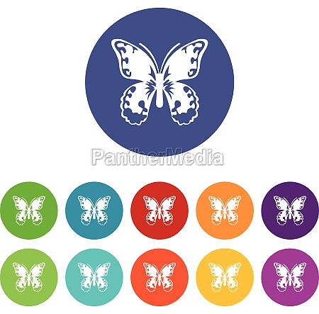 butterfly set icons