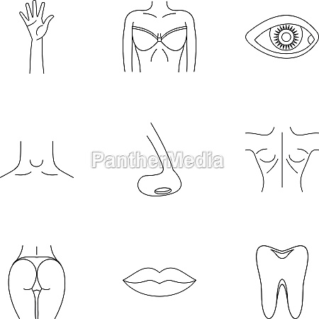 outer part of body icons set