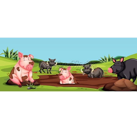 pigs and warthogs in mud scene