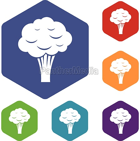 broccoli icons set