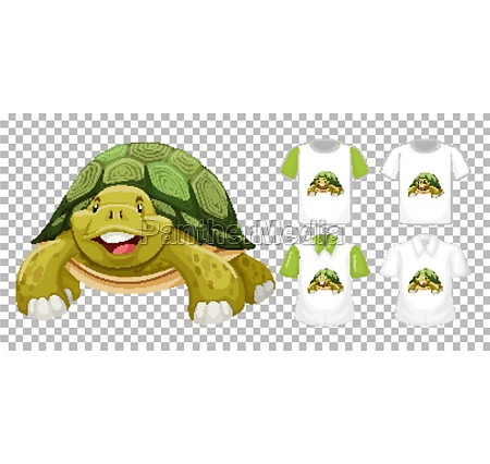 set of different shirts with turtle