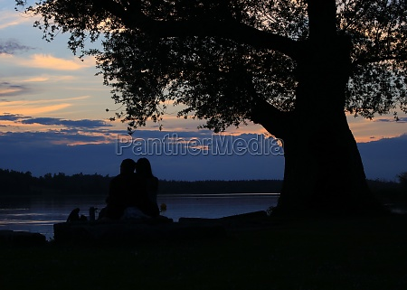 romantic sunset scene in auslikon zurich