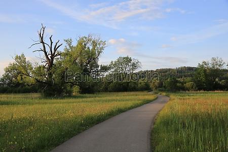 idyllic landscape near auslikon zurich canton