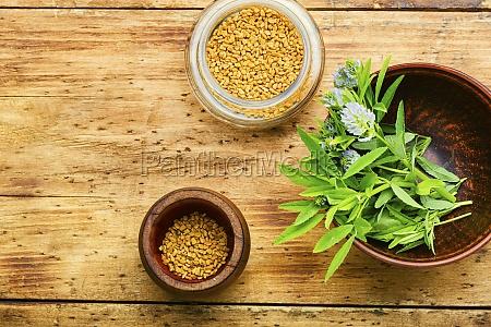 fenugreek seeds and leaves flat lay