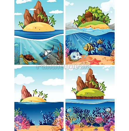 a set of island and underwater
