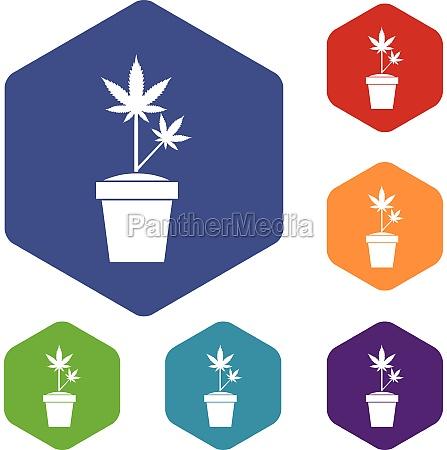 hemp in pot icons set