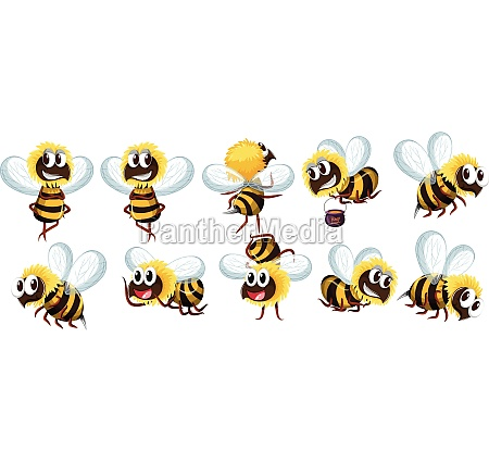 set of bee character