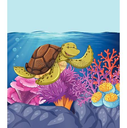happy turtle underwater reef scene